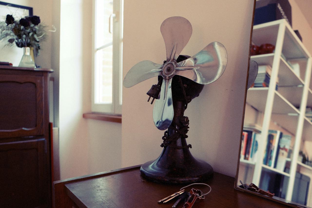 fan-699077_1280